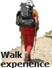 WalkExperience Logo